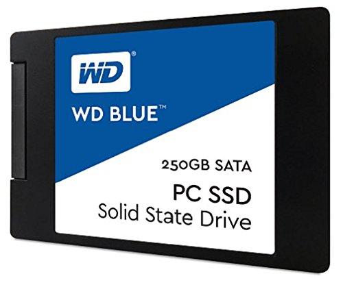 Western Digital Blue 250GB Internal Solid State Drive