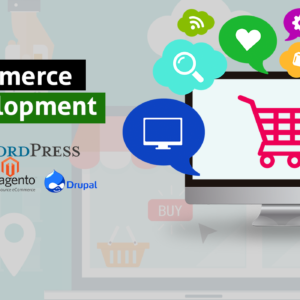 Ecommerce Website Development Delhi Nehru Place