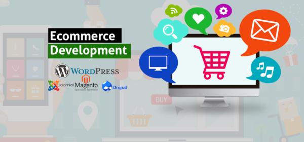 Ecommerce Website Development Delhi Nehru Place